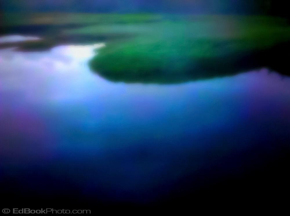 abstract shoreline of the Tahuya River at the Hood Canal, Mason County, Washington State, USA