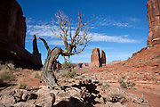UT00130-00...View of The Organ from the Park Avenue Trail in Arches National Park.