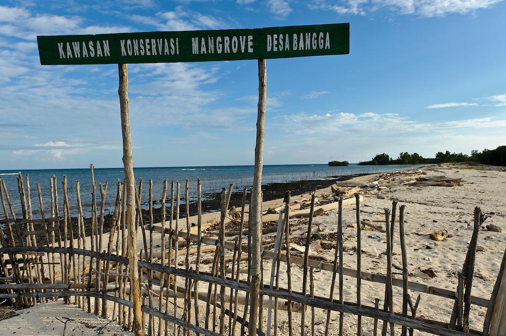 Mangrove rehabilitation area, Bangga, Gorontalo, Sulawesi, Indonesia.