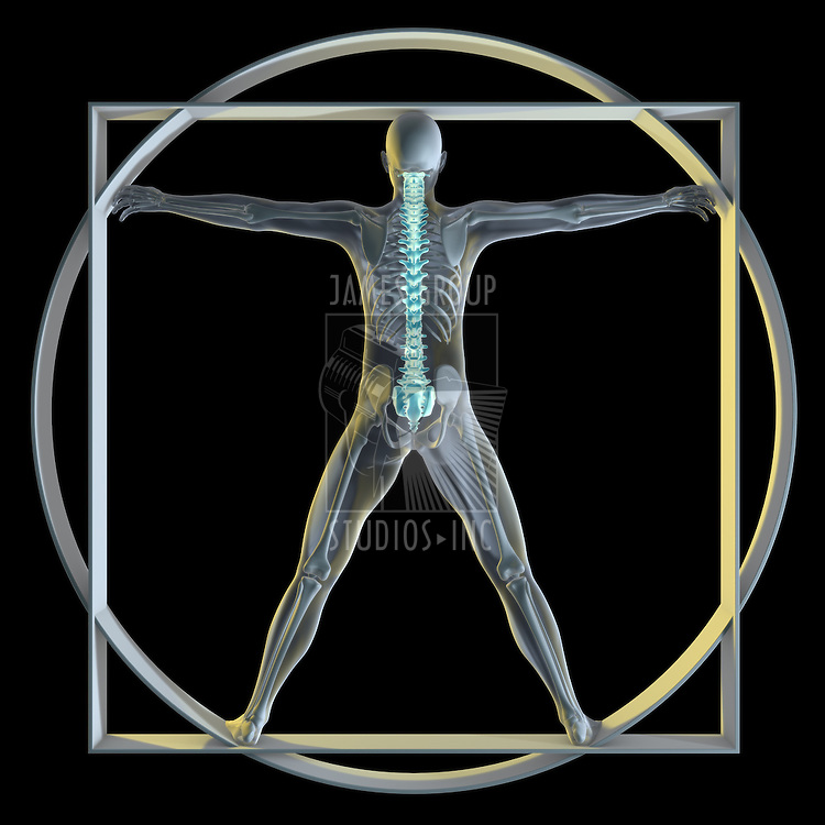 A 3d generated person posed like the famous Vitruvian Man (Symbol of health) rendered in a x-ray style highlighting the spine.