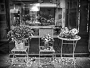 "Flower shop ""au nome de rose"""