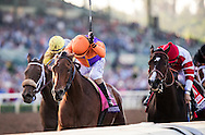 ARCADIA, CA - NOV 4:  Beholder #8, ridden by Gary Stevens (orange) overtakes Songbird #1, with Mike Smith to win the Breeders' Cup Distaff, at Santa Anita Park on November 4, 2016 in Arcadia, California. (Photo by Alex Evers/Eclipse Sportswire/Breeders Cup)