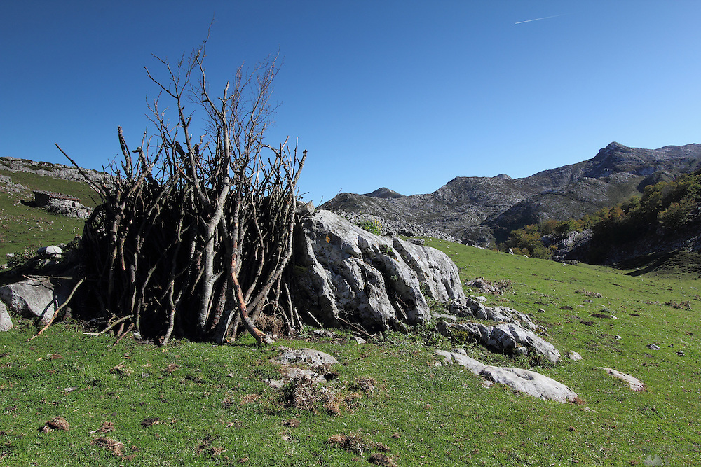 Firewood is piled up at a small collection of huts where the cows are kept in early winter, at Majada de las Bobiás, in the Picos de Europa