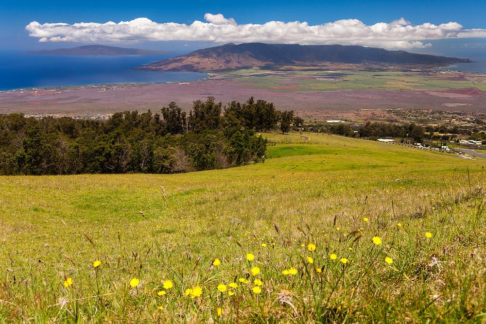 On the road to Poli poli on the western slopes of Hale'akala looking down onto West Maui and Lana'i, Hawai'i.
