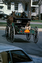 Young amish boy rides into town in back of family buggy.