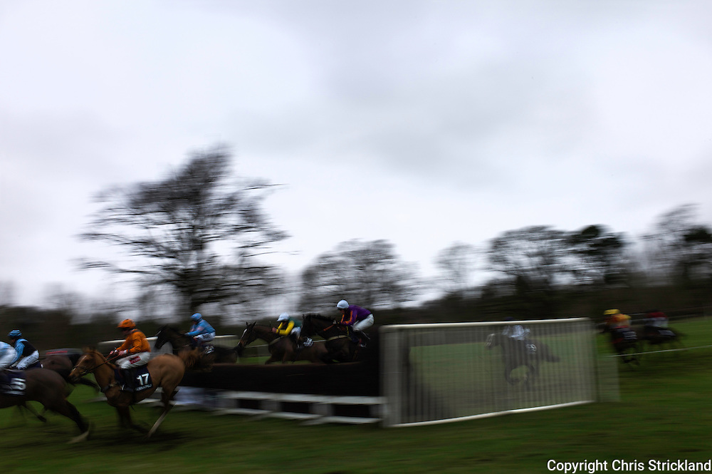 Horses in action during the Subaru Restricted Race at the Jedforest Point to Point.