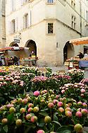 France, Languedoc Roussillon, Gard, Uzège, Uzès, place aux herbes, le marché