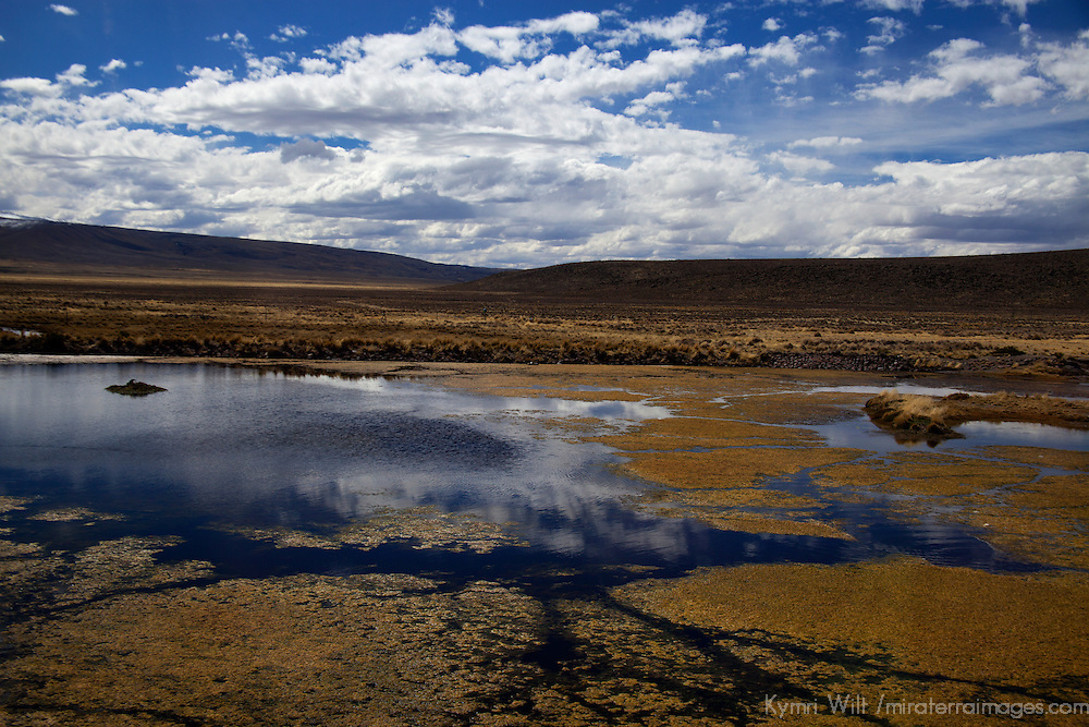 South America, Peru, Salinas and Aguaga Blanca National Reserve. Landscape and reflections of Salinas and Aguada Blanca National Reserve.