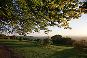 Cooper's Hill, Nut Hill & May Hill (L to R)  seen from under a beech tree on Crickley Hill on the Cotswold Way