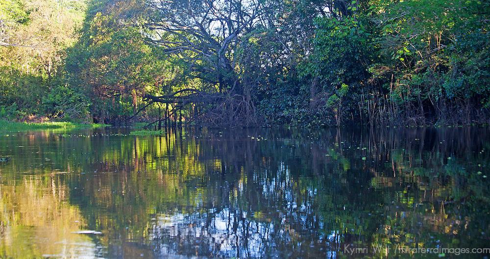 South America, Peru, Amazon. Peruvian Amazon reflection.