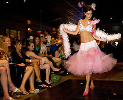 NEWS&GUIDE PHOTO / PRICE CHAMBERS.Alexa Masek has the audience's full attention as she models Pink-a-Licious, which sold for $1500 at Bra's For a Cause on Saturday night at the Town Square Tavern. The entry by Dr. Payne and St. John's Oncology tied for first place with Teton Orthopedic's baseball-themed bra.