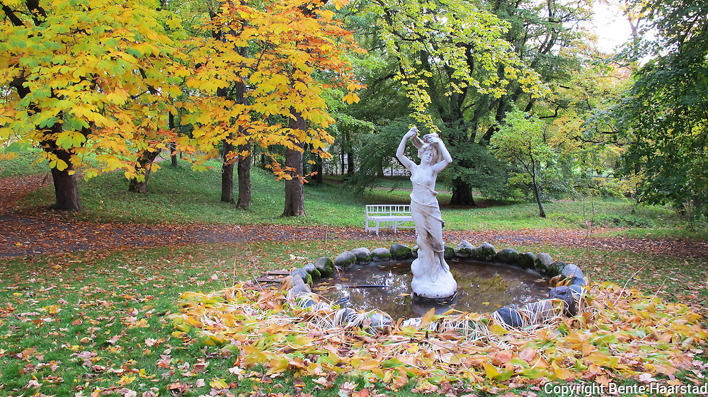 The garden at Ringve musical historic museum in Trondheim, Norway, have a lot of beautiful, old trees.