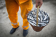 bucket full of hamsi. residents of sinop will come to the port for 'left overs' from the days catch.