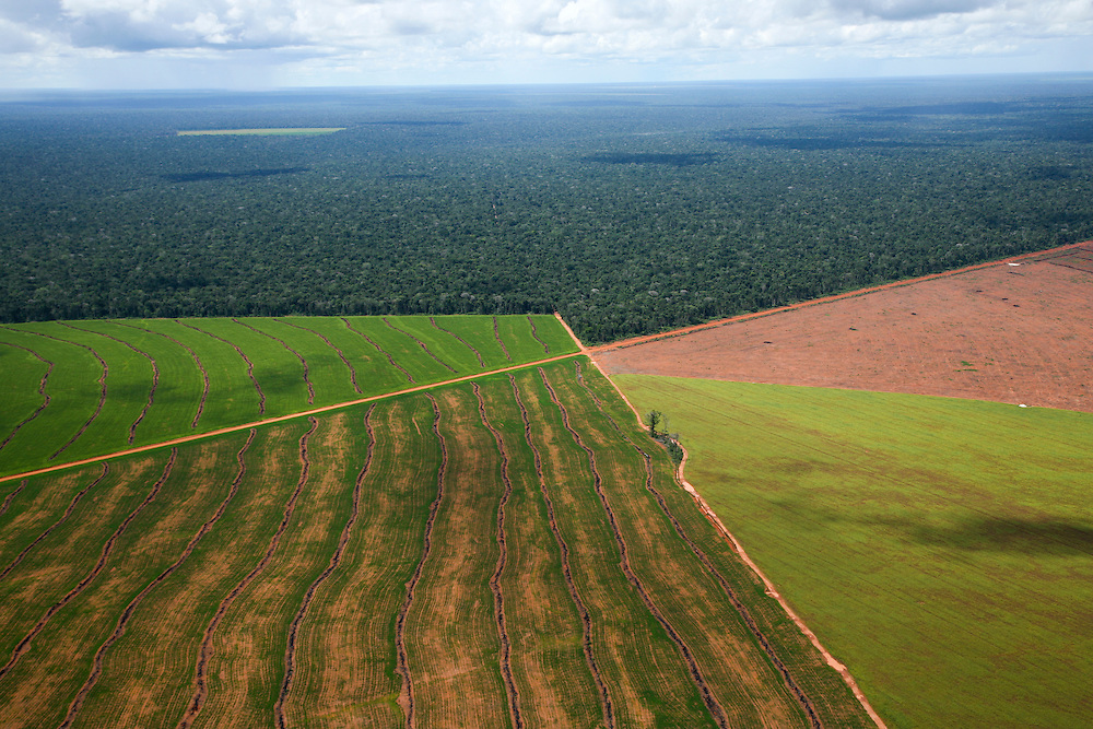 February 23rd 2006, Flight from Alta Floresta to Sinop, and the Xingu area..©Daniel Beltra