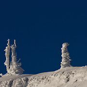 Rime ice, formed when wind, fog, and cold combine to build ice crystals on trees and other objects, covered trees at Hurricane Ridge, making this fanciful dancing duo with a wall flower off to the side