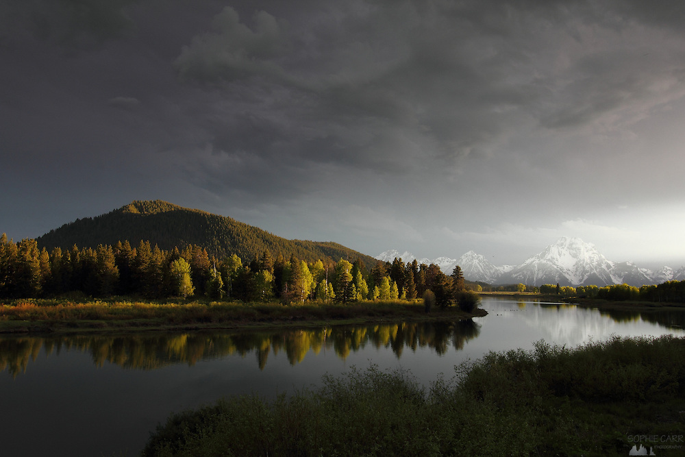 A small shaft of light just before sunset at Oxbow Bend on the Snake River pours light onto the new aspen leaves, in Grand Teton National Park, Wyoming, USA