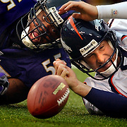 The Denver Broncos' Danny Kanell (#13, QB) looks for the loose football after having it stripped while being sacked by the Baltimore Ravens' Terrell Suggs (#55, LB) during the fourth quarter of their game at M&T Bank Stadium in Baltimore, Md. Sunday. The Broncos lost the game 26-6. The Broncos were able to recover the ball but lost yardage on the play..(Photo by Marc Piscotty / 2004)