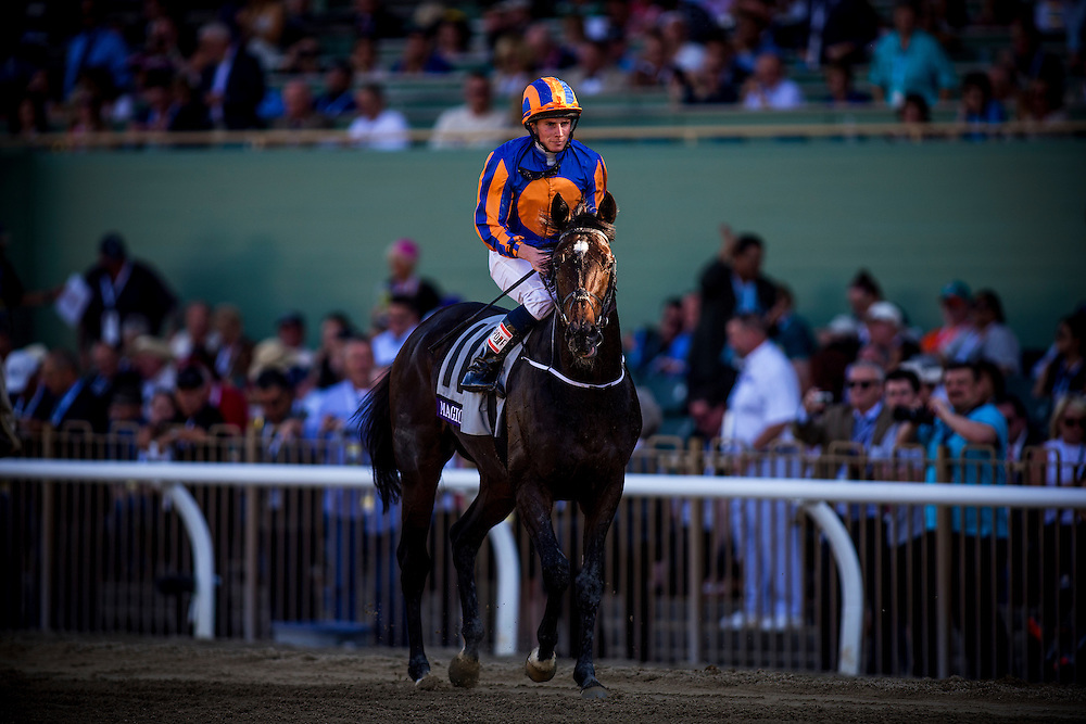 Magician, ridden by Ryan Moore wins the Breeders' Cup Turf on November 2, 2013 at Santa Anita Park in Arcadia, California during the 30th running of the Breeders' Cup.(Alex Evers/ Eclipse Sportswire)