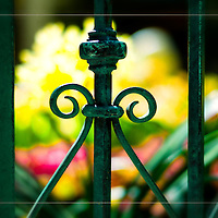 Las Vegas &amp; Botanical Gardens ... exquisite, beautiful, peaceful, colorful, elegant ... and full of magical images. <br /> <br /> Craig W. Cutler Photography.<br /> DesignLIFE by Craig W. Cutler Photography.