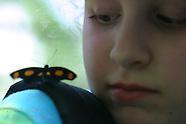 12: ECOTEACH KIDS & BUTTERFLIES
