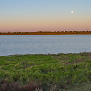 Moon rising at dusk over Katy Prairie, in west Harris County, Texas.