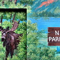 Bull Moose and No Parking Sign Mural in Jackson, Wyoming<br /> Around Jackson Hole, Wyoming, you are bound to see a moose somewhere. They appear as a sculpture, a taxidermy display, on a coffee cup, in a town called Moose or as part of a mural warning tourists not to park. If you are lucky, you might see one of the states&rsquo; 7,500 animals rumbling in the wild.