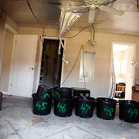 TAMPA, FL -- March 22, 2011 -- A bedroom is filled with materials to grow marijuana plants in a vacant home that was raided in North Port, Fla., 2011.  A recent study showed that one and five homes in the state of Florida is vacant.