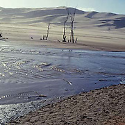 Great Sand Dunes National Park, Medano Creek, Colorado