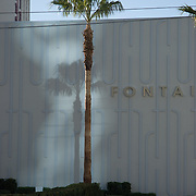 Sunshine creates a shadow of a the palm tree on a building in Las Vegas.