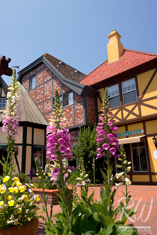 Blooming Spring Flowers and Danish Half-Timbered Houses, Solvang, California