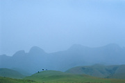 Rain squall in the upper Ndedema River basin, Mdedelelo Wilderness, Drakensberg. Viewed from Skoongesigt Cave, the four main peaks (left to right) are Sugar Loaf 2723m, Point 2949, Little Saddle Left 3073m and  Little Saddle Right 3081m. Ukhahlamba-Drakensberg Park, KwaZulu-Natal, South Africa. Chinon CM5, 28/2.8. Fuji RD. December 1988.