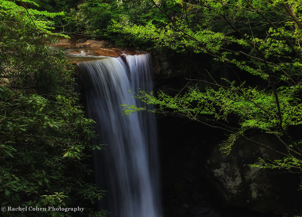 &quot;Cool as a Cucumber&quot; 2 <br /> <br /> A wonderful calm and dreamy scenic waterfall in the forest!!<br /> <br /> Waterfalls by Rachel Cohen