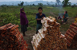 A remote area inside an Assamese national park and reserved land that has been encroached on is shown December 28, 2003 The encroachers are causing tremendous deforestation as they sell the wood and clear the land for agriculture. Forsetry officials chase them off the land but they come back almost immediately after the clearing operation and continue to live in this protected area. (Ami Vitale)