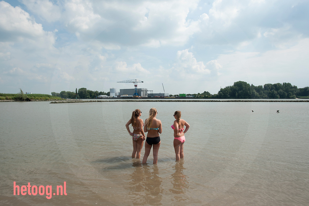 The Netherlands, Nederland 19aug2015 Lekdijk west, schoonhoven krimpenerwaard. Zwemmen in de Lek