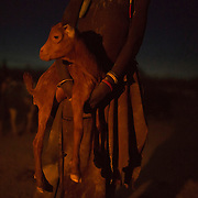 A Turkana girl holds a lamb at  the end of the day inside her family's cattle Kraal in the disputed area of the Ilemi triangle of north-western Kenya near the borders with Ethiopia and South Sudan. (For Reuters)