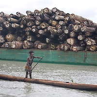 Activists from the Greepeace ship 'Esperanza', and assisted by local land owners, halt the loading of illegally logged trees onto the 'Harbour Gemini' ship from the rainforests of Papua New Guinea, in Paia inlet, Gulf Province, Papua New Guinea, Wednesday 3rd September 2008. These forests are being felled by Turama Forest Industries - a group company of Malayasian company Rimbunan Hijau. Twenty percent of global greenhouse emissions annually are caused by the deforestation of natural forests worldwide.