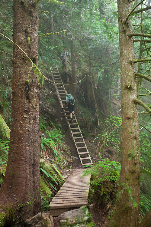 Zach Podell-Eberhard (top) and Henry Pedersen climb a ladder along the West Coast Trail, British Columbia, Canada.