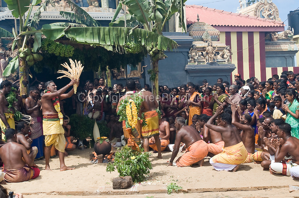 Sri Lanka. Festival at Kali Kovil in Udappu.