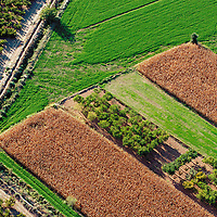 Aerial view of the farming lands next to the Caspe Sea and the Ebro River. .