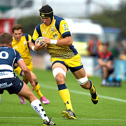 Worcester Warriors v Bristol Rugby
