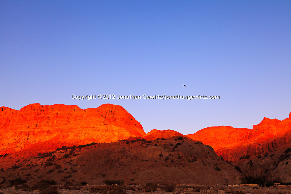 Warm sunlight illuminates the rocky hills near the Dead Sea oasis of Ein Gedi at dawn.