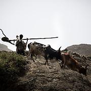 Adi Sibhat, Tigray, Ethiopia