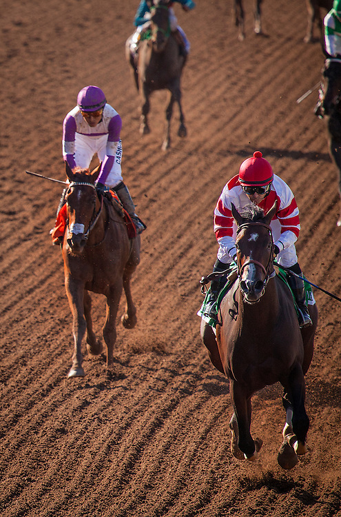 September 26 2015: Songbird with Mike Smith up wins the Chandelier Stakes at Santa Anita Park, Arcadia CA. Alex Evers/ESW/CSM