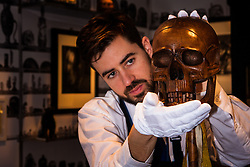 """London, March 4th 2015. Sotheby's in London hosts """"one of the most extraordinary collections of our time"""", an anonymous collector's vast assembly of fine art pieces, including skulls, bear sculptures, paintings and installations. PICTURED: Sotheby's technician examines a theatrical prop skull made of walnut and bamboo, which is expected to fetch £800 - £1,000 at auction."""