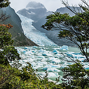 Visit Serrano Glacier on Last Hope Sound (Seno de Última Esperanza) via ferry from Puerto Natales, Chile, South America. Última Esperanza Sound is an ocean inlet stretching from the mouth of Eberhard Fjord to Monte Balmaceda within Magallanes Basin. Filling a valley carved by ice age glaciers, this inlet is a tidewater river which drains an extensive basin including almost all the surface waters of Torres del Paine National Park through the Serrano River. The foot of South America is known as Patagonia, a name derived from coastal giants, Patagão or Patagoni, who were reported by Magellan's 1520s voyage circumnavigating the world and were actually Tehuelche native people who averaged 25 cm (or 10 inches) taller than the Spaniards.