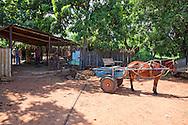 Blacksmith shop, Las Martinas area, Pinar del Rio, Cuba.