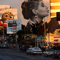 SUNSET BLVD 1998-2001  ©Jonathan Alcorn /JTA