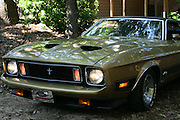 Front view of a classic 1973 Ford Mustang Mach 1. Gold and black.