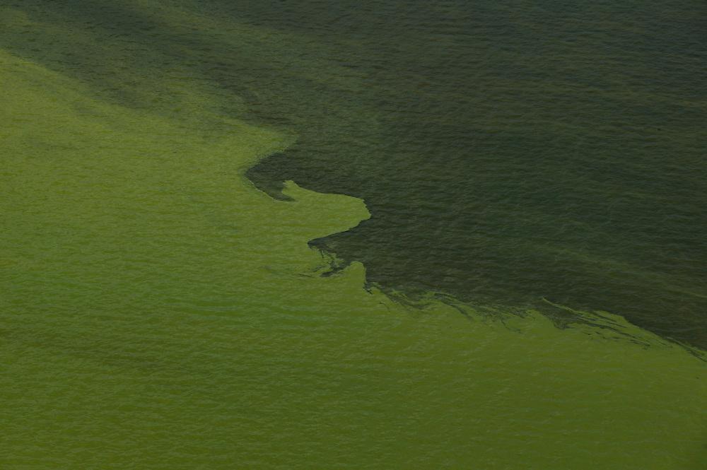 Dec. 8, 2003: Above a river in Para State, Brazil. ©Daniel Beltra