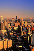 Image of the Seattle Skyline with downtown buildings and Mt. Rainier, Seattle, Washington, Pacific Northwest